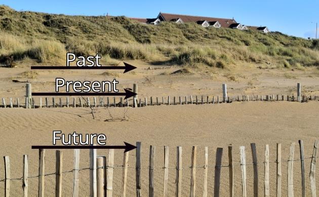 dune-regeneration